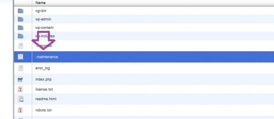 файл .maintenance