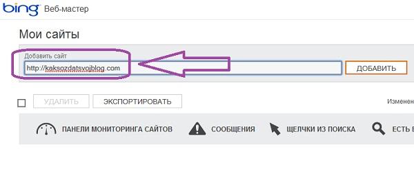 Впишите название сайта