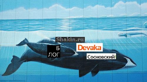 Блогу Kaksozdatsvojblog.com исполнился 1 Год!!!!